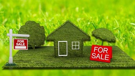 kampung kurma, kampoeng kurma, NJOP Tanah, Bisnis Property,